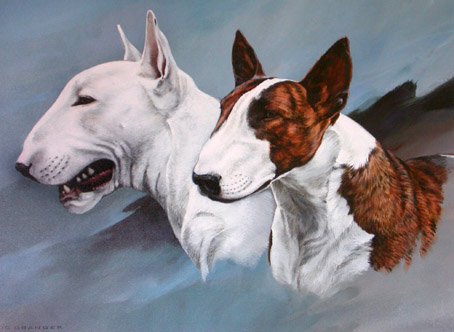English Bull Terrier Art Prints Pippa Thew Mick Cawston Paul Doyle - Bull terrier art